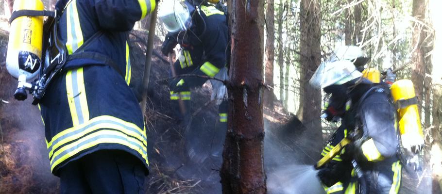 Bekämpfung von Waldbränden